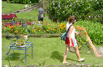 Tourist at Garden in Boquete, Panama